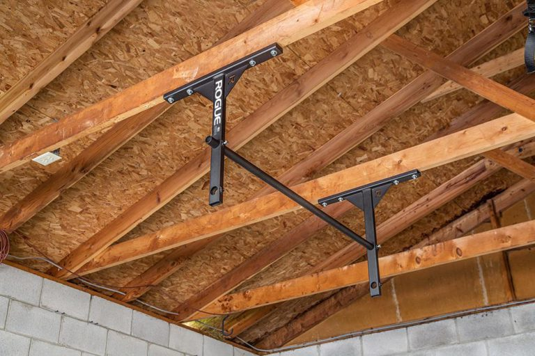best pull up bar review